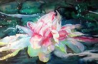 Seerose, Aquarell auf Papier, 120x60 cm